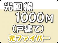 光回線 1000Mbps(戸建て)