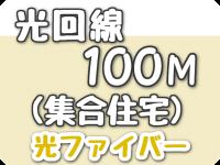 光回線 100Mbps(集合住宅)