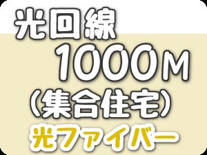 光回線 1000Mbps(集合住宅)