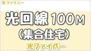 光回線 100Mbps (集合住宅)