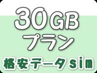 30GBプラン(格安データsim)
