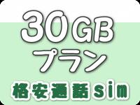 30GBプラン(格安通話sim)