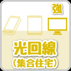集合住宅用 光ファイバー(光回線)のデータ通信(自宅PCでのデータ通信に強い)
