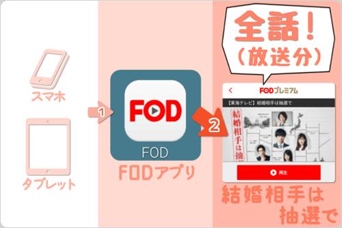 スマホ・タブレット (FODアプリ) で 結婚相手は抽選で「全話 (放送分) 」をイッキ見・見逃し視聴